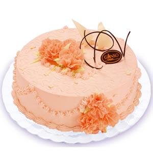 元祖蛋糕-春晖洒暖
